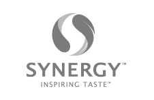 b2b creative agency synergy logo